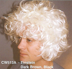 BCW513A Men Costume Wig, Einstein