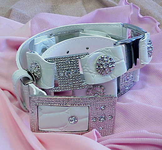 BTK19W - ladies stylish belts